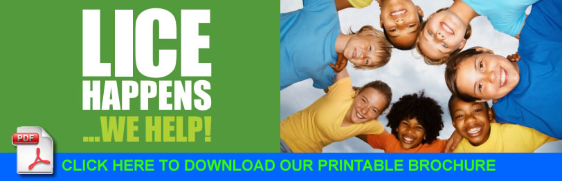 Lice Happens We can Help CLICK HERE TO DOWNLOAD OUR PRINTABLE BROCHURE